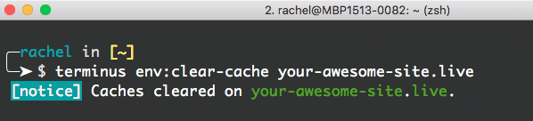terminus env:clear-cache your-awesome-site.live