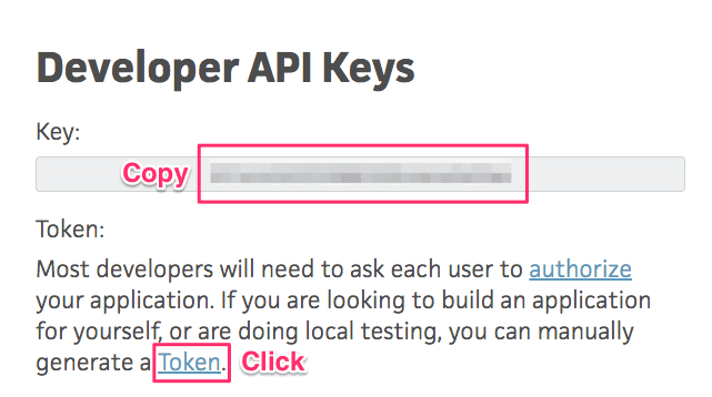 Copy developer api key