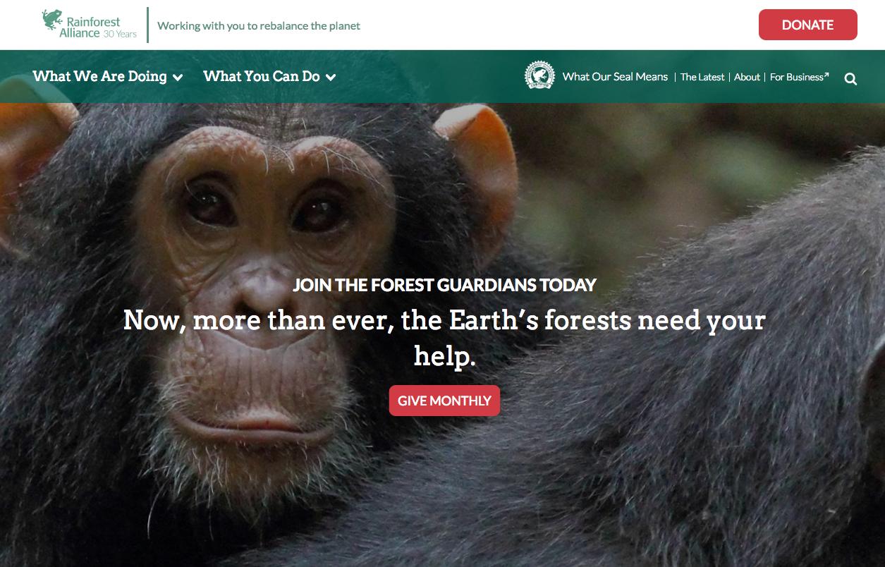 Rainforest Alliance homepage