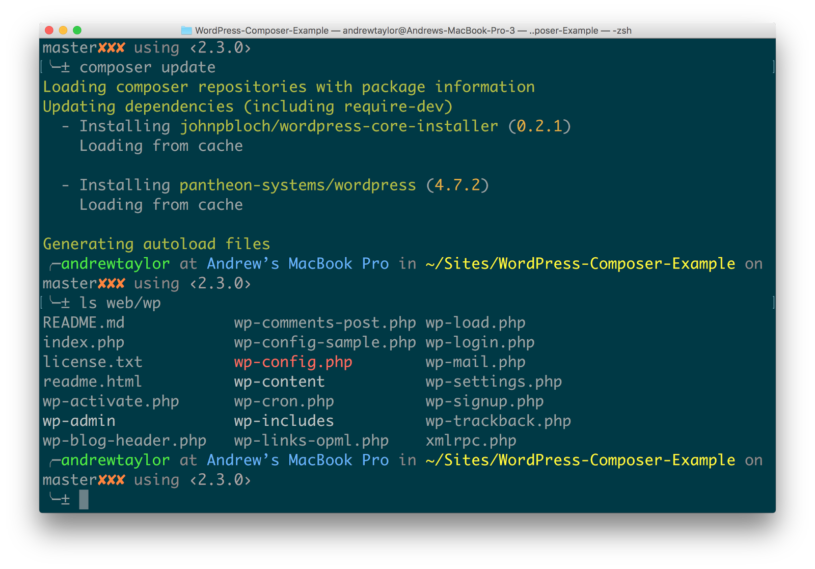 Web Docroot in WordPress & Composer