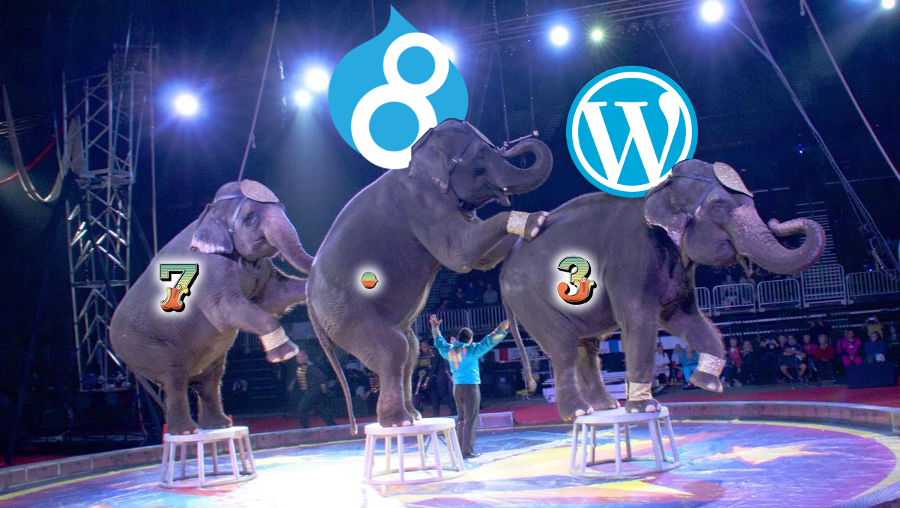 Three elephants at a circus with Drupal 8 and WordPress logos hovering overhead