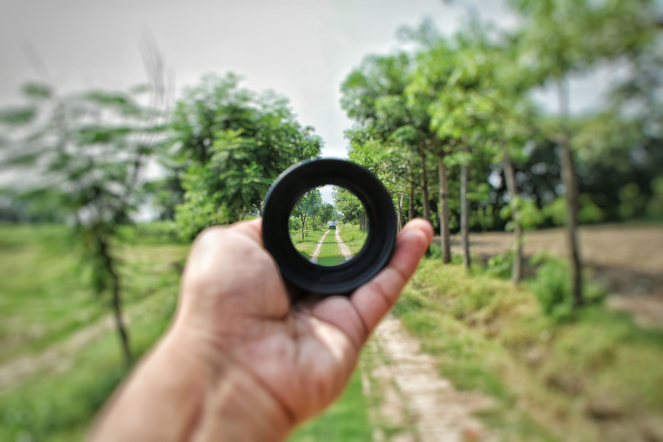 lense vision on outdoor path