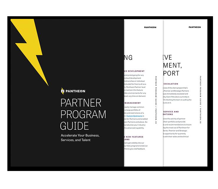 Partner Program Guide thumbnail
