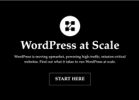 WP @ Scale homepage with critical CSS