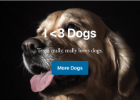 Gutenberg Hero Block created with Advanced Custom Fields showing a dog